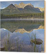 Bow Range And Herbert Lake Banff Wood Print