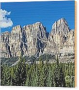 Bow Valley Wood Print
