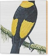 Bowerbird  Wood Print