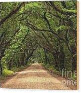 Bowing Oak Trees Wood Print