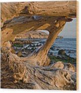 Bowling Ball Beach Framed In Driftwood Wood Print