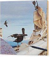 Bowsprit Pelicans Wood Print