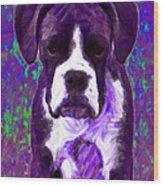 Boxer 20130126v6 Wood Print