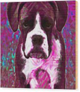 Boxer 20130126v7 Wood Print by Wingsdomain Art and Photography