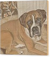 Boxer Dog George Wood Print by Faye Symons