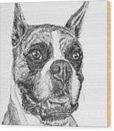 Boxer Dog Sketch Wood Print