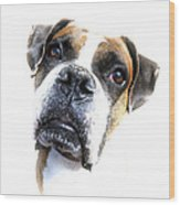Boxer Expression Wood Print
