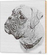 Boxer Wood Print by Hannah Taylor