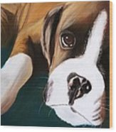 Boxer Wood Print by Michele Turney
