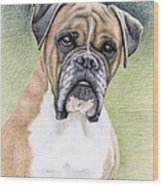 Boxer Portrait Wood Print