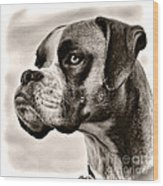 Boxer Profile Wood Print