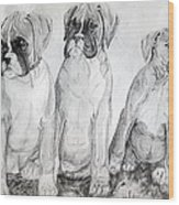 Boxer Puppy Dog Poster Print Wood Print by Olde Time  Mercantile