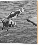 Boy And His Dog Dive Together Wood Print