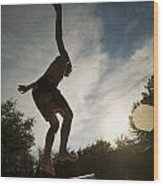 Boy Jumping Off Diving Board Wood Print
