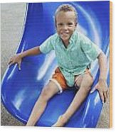 Boy On Slide Wood Print by Kicka Witte