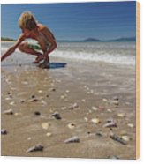 Boy Picking Seashells On The East Coast Wood Print