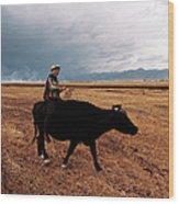 Boy Sitting Cow In Field Wood Print