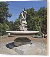 Boy With Dolphin Statue In Hyde Park London England Wood Print by Robert Preston