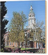 Boyle County Courthouse 3 Wood Print