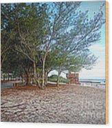 Bradenton Beach  Pine Trees Wood Print
