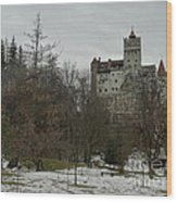 Bran Castle In December Wood Print