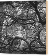 Branch Out Wood Print