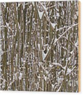 Branches And Twigs Covered In Fresh Snow Wood Print