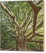 Branches  Wood Print