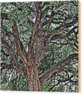 Branches Of Brio Wood Print