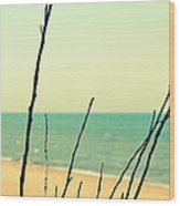 Branches On The Beach Wood Print