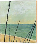 Branches On The Beach - Oil Wood Print by Michelle Calkins