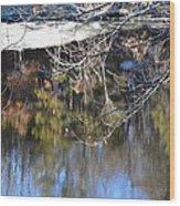 A Wisconsin River Scene Wood Print