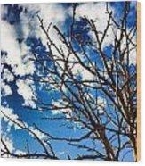 Branching Light  Wood Print