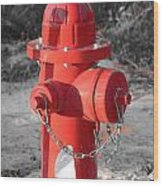 Brand New Red Hydrant On Bw Wood Print
