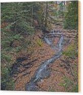 Bridal Vail Falls - Cvnp Wood Print