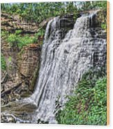 Brandywine Falls Wood Print by Jenny Ellen Photography