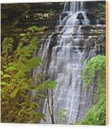 Brandywine Falls Of Cuyahoga Valley National Park Waterfall Water Fall Wood Print