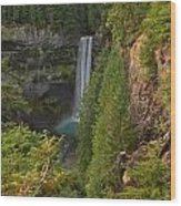 Brandywine Falls Plunge Wood Print