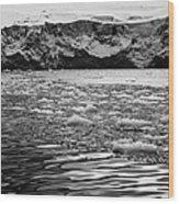 brash sea ice forming in front of glacier wall face port lockroy Antarctica Wood Print
