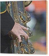 Brass Musical Instrument 01 Wood Print