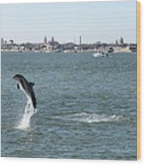 Breaching Dolphin Wood Print