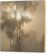 Breaking Through The Fog Wood Print