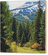 Breckenridge Fall Wood Print