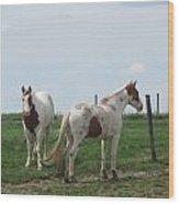 Breed Horses Wood Print