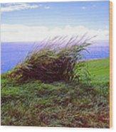 Breezy Hill Wood Print