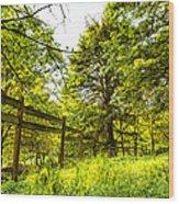 Breezy Spring Afternoon Wood Print