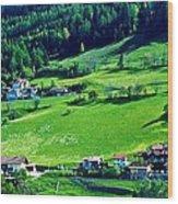 Brenner Pass Greenery Wood Print