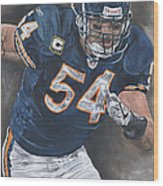 Brian Urlacher Seek And Destroy Wood Print by David Courson