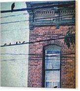 Brick Building Birds On Wires Wood Print