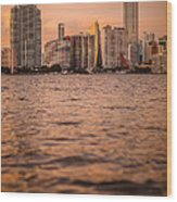 Brickell Sunset Wood Print